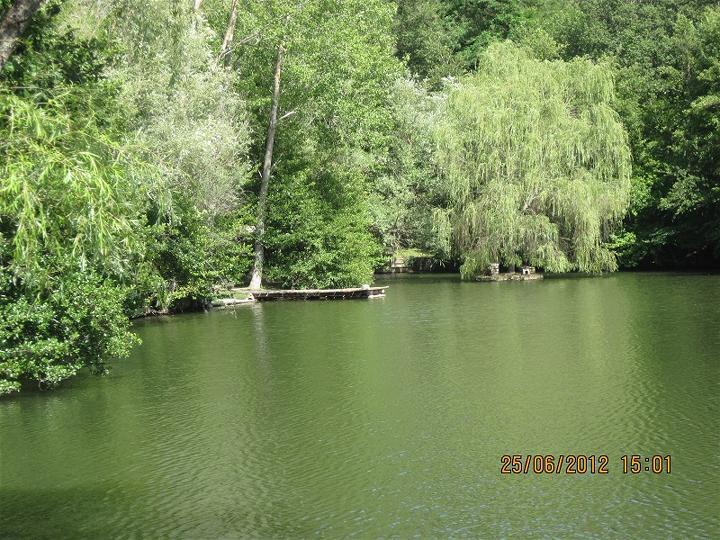 Cottage con lago privato greve in chianti toscana casa for Piani cottage piccolo lago